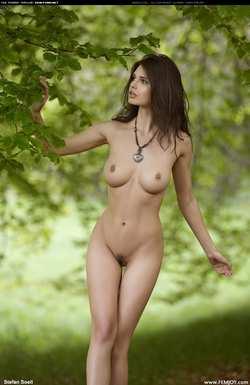 Голые телки в лесу фото